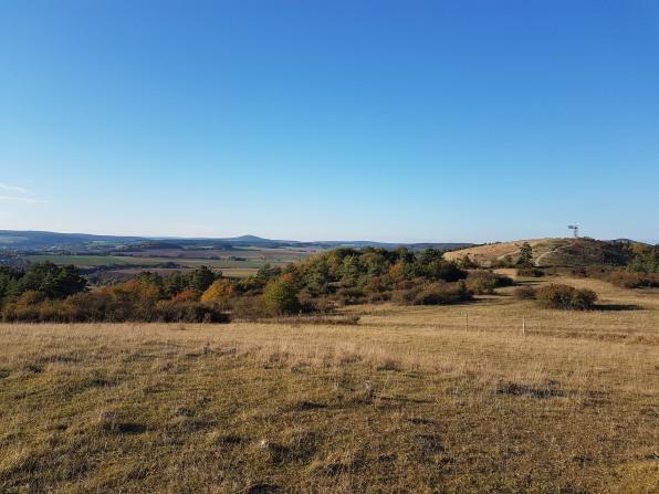 huenfeld_9