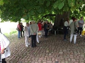 Seniorenfahrt nach Hann. Münden (4)