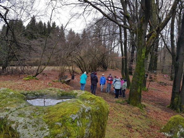 Über den Frauenstein zum Bonifatiusbrunnen (1)