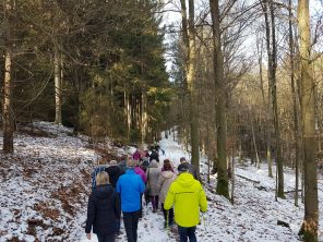 Hutzelwanderung nach Dorfborn (5)