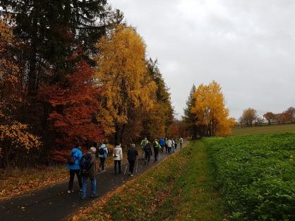 Haderwaldhütte - Thesenstein (4)
