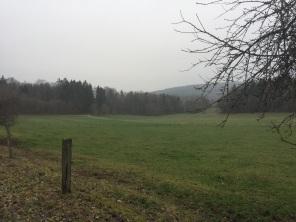 Rund um Büchenberg (2)
