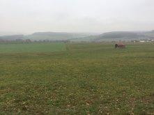 Rund um Büchenberg (5)