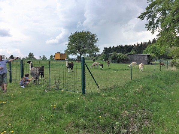 Gipfeltour Schotten (12)