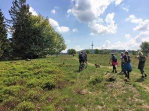 Gipfeltour Schotten (2)