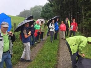 Durch die Kaskadenschlucht nach Obernhausen (4)