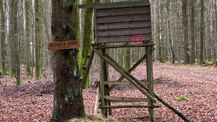 Arzwaldrunde - Magdlos (1)