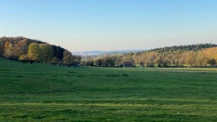 Struthwiese - Hegwald (8)